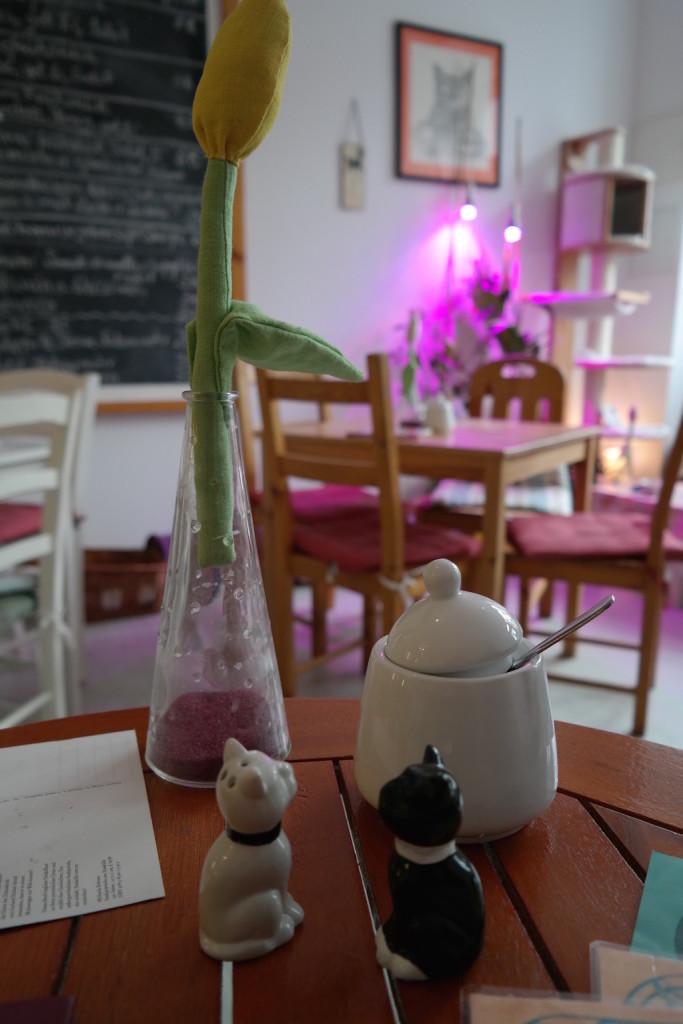 pee pees katzencafé, berlin, neukölln, kaffee, kuchen, trinken, entspannen, süß8